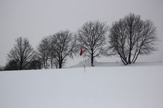 On the golfcourse. Wolfsberg. Kärnten, Austria.
