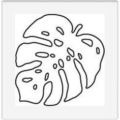 dd002 monstera leaf-600x600.jpg (Изображение JPEG, 600×600 пикселов)