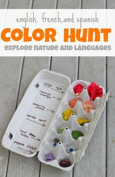 What a simple way to work in some language learning while getting fresh air. Color hunt outside using multiple languages!