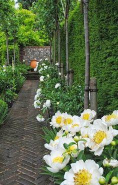 Amberley, Sussex, Open Gardens