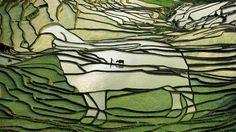 Картинки по запросу рисовые поля в японии ночью