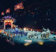 An End of An Era.  @ringlingbros  Today I learned Ringling Bros Barnum and Bailey Circus has decided to end its 146-year run due to decrease ticket sales. The News brought a tear to my eye because there's something magical about the circus. It's a place where families can spend time together and see something truly spectacular and create memories of a lifetime.  I will never forget my first time I saw The Greatest Show on Earth. My stomach filled with butterflies in anticipation as we…