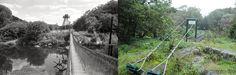 """Im Wandel der Zeit - Im heutigen NP Thayatal Blogbeitrag werfen wir einen Blick zurück, in eine """"längst vergange Zeit"""". Und tatsächlich viel lässt heute nicht mehr auf die einstige Zeit des Eisernen Vorhangs schließen. Die Narben der Landschaft sind größtenteils wieder verheilt. Wir haben drei Standpunkte früher und heute verglichen und den Wandel der Zeit für Euch sichtbar gemacht. Alle Bilder und die Infos dazu gibt's im aktuellen Blogbeitrag: http://blog.np-thayatal.at/im-wandel-der-zeit/"""