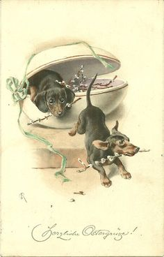 Dachshunds with pussy willows old greeting card/postcard art