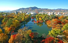 While there are countless famous places in Hokkaido to enjoy the colors of fall, this piece focuses on the downtown autumn foliage spots that are conveniently accessible from the Sapporo subway. #Autumn #Color #AllAboutJapan #Japan #Travel