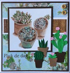 """""""Pluk de dag"""" met papier en plaatje Herbs & Leaves van Marianne Design"""