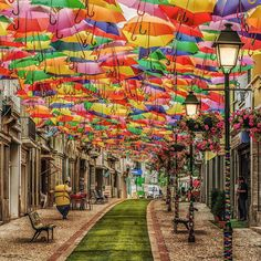 Umbrella sky street in Agueda, Portugal