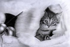 It's almost Christmas, can you believe it I wanted to get in the christmas spirit so I made a christmas drawing. I decided to draw a christmas kitty. Christmas Kitten, Christmas Drawing, Christmas Time, Merry Christmas, Realistic Pencil Drawings, Art Drawings, Graphite Drawings, Pencil Portrait, Portrait Art