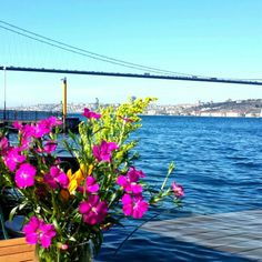 İstanbul Beylerbeyi Istanbul, Earth, Places, Beautiful Landscapes, Lugares, Mother Goddess, World, The World