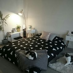 Bedroom mattress on floor