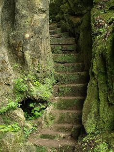 entrance to a fairy landscape , the stairs to the ancient riverndell elfish city or the staircase to sleeping beauty and her fairytale happy ending , there is magic here grimm and fairy photo art to inspire to dream Stairway To Heaven, The Secret Garden, Secret Gardens, Abandoned Places, Pathways, Belle Photo, Stairways, Beautiful Places, Beautiful Stairs