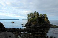 A Guide to Bainbridge Island: The Nantucket of the Pacific Northwest