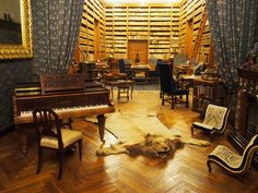 zámek Betliar - knihovna Animal Print Rug, Piano, Roots, Pictures, Home Decor, Photos, Decoration Home, Room Decor, Pianos
