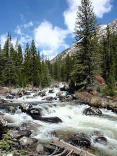 Beartooth Mountains, Montana - along the Boulder River.  We can go hike up here .. there are some great trails!