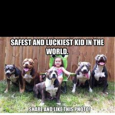 I love Pitbulls! They are so nice if you train them right!