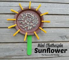 Use sunflower seeds, paper plate, craft stick and mini clothespins to make this kid craft sunflower.