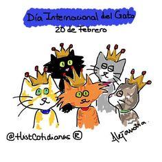 #diainternacionaldelgato  #gatos by histcotidianas