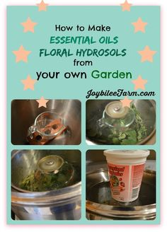 How to make essential oils at home - The ability to make my own essential oil changes EVERYTHING!