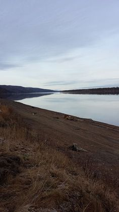 Yukon River, Grayling