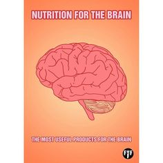 Nutrition for the brain. The brain is the most complex organ in the human body. This is the main organ of the nervous system. The brain consists of 100 billion neurons. The brain needs proteins, polyunsaturated fats, carbohydrates, vitamins, amino acids, antioxidants and minerals for normal functioning.  Proteins: Proteins are the main food for the brain. Proteins are high molecular weight organic substances consisting of alpha-amino acids that are linked in a chain by a peptide bond…