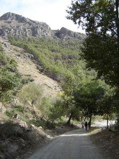 Nacimiento nr Laujar de Andarax « Photographs of Spain // Las Alpujarras // Andalucía Vive Alpujarra
