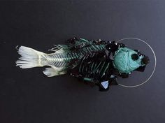 crystallized dead fish by Tyler Thrasher