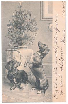 Vintage Dachshund Christmas postcard, 1905, Germany