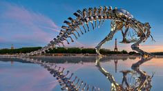 パリの街にティラノサウルスが出現、しかもクロム製でピッカピカ