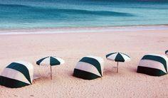 розовый пляж багамы - Поиск в Google