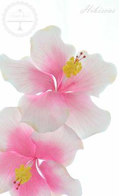 Hibiscus in sugar