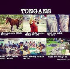 T !? fooor #TONGANS. hahaha. ( ;