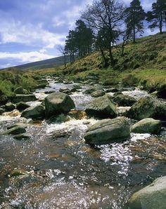 Sally Gap, River Liffey, Co Wicklow