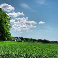 Norwegian countryside. #bondelandet #rygge #visitnorway #ilovenorway #ilovenorway_østfold