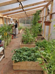 We just put in some cold season crops, we're excited to see how fall/winter treats our greenhouse! Lean To Greenhouse, Backyard Greenhouse, Greenhouse Plans, Vegetable Garden For Beginners, Veg Garden, Vegetable Garden Design, Vegetable Gardening, Organic Gardening, Vegetable Bed