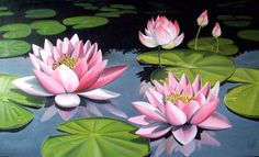Lotus In Lake by Vanessa-Arendt on DeviantArt