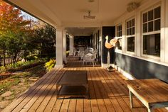 porch porch porch No railing and with wood or treated woodish look floor. YES