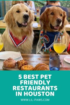 5 Best Pet Friendly Restaurants in Houston. It's always hard to leave your home when you have a pet. Your pet will certainly yawp and follow you to the ends of the earth– or at least until you're forced to bang the door in her face. To ensure you never ever have to experience that unfortunate farewell again– until you have to go elsewhere, at least– we've assembled this list of pet-friendly restaurants in Houston. #pet #friendly #restaurants #houston #dog #dogs #cat #cats #petfriendly
