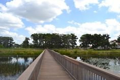 Beautiful view in Lake Nona.  http://www.sellbuylakenona.com