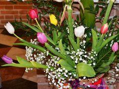 Sono pieni di vita e di colore questi tulipani raccolti in un vaso, davanti all'altare di una chiesa.