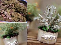 La casita pequeña: Souvenirs del pueblo