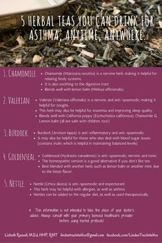 5 Herbal teas you can drink for asthma, anytime, anywhere. Herbal Teas, Lemon Balm, Body Systems, Asthma, Simple Way, 5 Ways, Something To Do, Herbalism, Improve Yourself