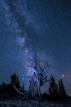 Photo by Beverly Houwing — National Geographic Your Shot