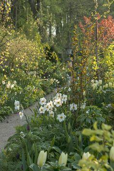 Scandinavia's Martha Stewart: A Garden Visit with Claus Dalby in Denmark: Gardenista