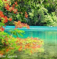 The Blue Lagoon in Jamaica. One of the most gorgeous places I've been.