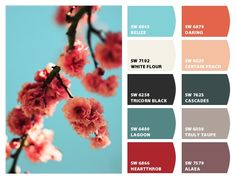 Colour scheme for the living room? The rusty reds for autumn / winter. Need new curtains