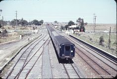 102792: Somerton Up Spirit of Progress S 313 and Up Royal Tour Special S 306. 25 February 1963.