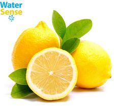 Your skin and hair love lemons just as much as your stomach. Lemons have a wide range of beauty benefits. Here are the best beauty uses for lemons that you need to try Home Remedies, Natural Remedies, Health Benefits, Health Tips, Women's Health, Health Fitness, Lemon Benefits, Cucumber Benefits, Workout Fitness