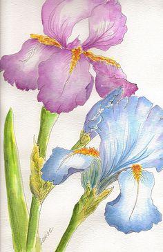 Tinta china colores Flores