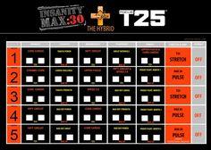 Insanity Max 30 & T25 Hybrid