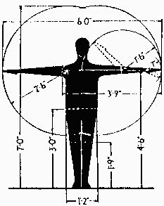 Dimensions of the Human Figure